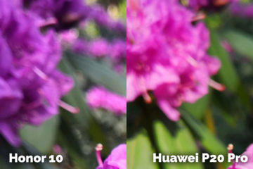 Honor 10 vs Huawei P20 Pro detail rostlina fototest
