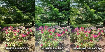 fototest telefonu Nokia 8 Sirocco vs Huawei P20 Pro vs Samsung Galaxy S9+ - zahrada