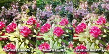 Který mobil má nejlepší fotoaparát? Nokia 8 Sirocco vs Huawei P20 Pro vs Samsung Galaxy S9 Plus - kytice