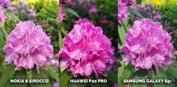 Který fotomobil je nejlepší? Nokia 8 Sirocco vs Huawei P20 Pro vs Samsung Galaxy S9 Plus makro