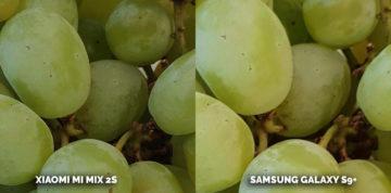 Který fotomobil je nejlepší? Samsung Galaxy S9 plus a Xiaomi Mi Mix 2S - hrozny