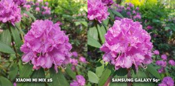 Který mobil fotí nejlépe? Xiaomi Mi Mix 2S nebo Samsung Galaxy S9 Plus kytice