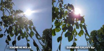 Jaký mobil fotí lépe? Samsung nebo Xiaomi - slunce