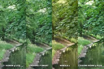 Fototest levných telefonů Honor 9 Lite vs Huawei P Smart vs Nokia 6.1 vs Xiaomi Redmi 5 Plus - stromy detail
