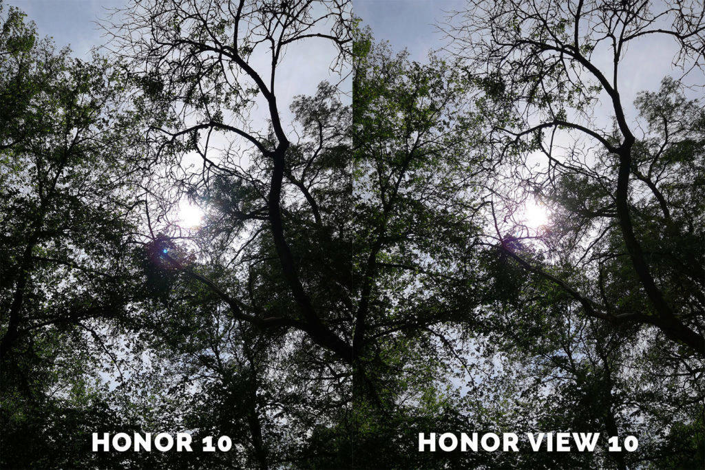 Honor 10 vs. Honor View 10 fototestovani stromy
