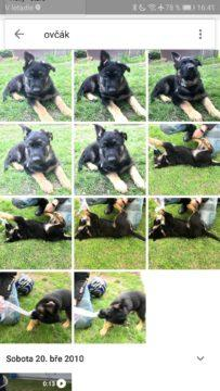 5 povedených aplikací Google Fotky