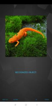 Druhý test AI Benchmark - rozpoznání objektu