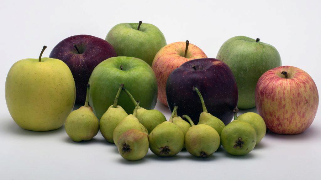Srovnávat iOS a Android je tak trochu srovnávání jablek s hruškami