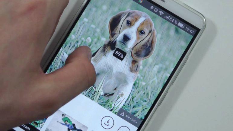 Aplikace Prisma - videopohled