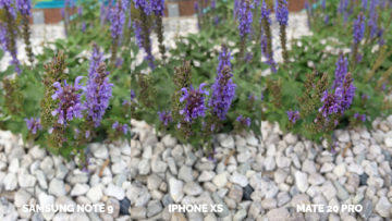 apple iphone xs vs huawei mate 20 pro vs samsung galaxy note 9 makro květina
