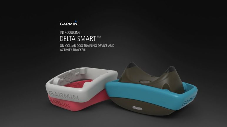 Delta Smart: Activity Tracking and Training for Dogs