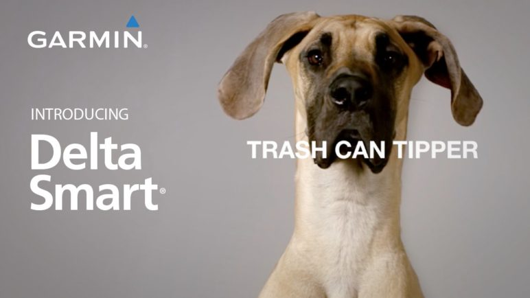 Delta Smart: Raise a Better Pet