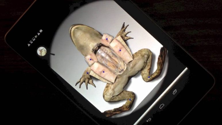 First Ever Android Virtual Frog Dissection App - by Froguts