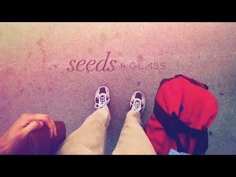 Seeds [through Google Glass]