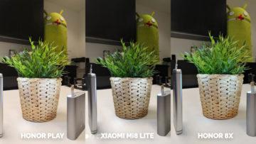 Srovnani fotoaparatu Honor Play vs Xiaomi Mi 8 Lite vs Honor 8X test blesku umela kvetina