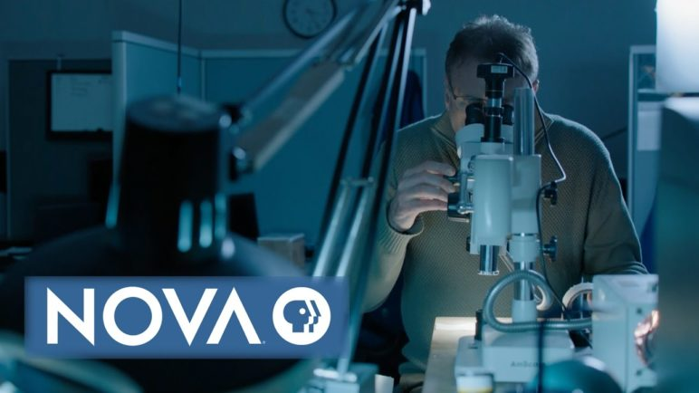 The Battery That Refuses to Explode   NOVA