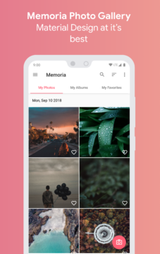 Memoria Photo Gallery¨1