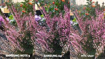 Srovnání fotoaparátů Samsung Galaxy A9 vs Samsung Galaxy Note 9 vs HTC U12+ makro
