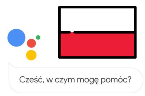 asistent google polsko