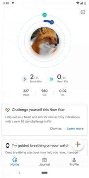 google fit mesicni vyzva