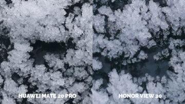 Fototest Honor View 20 vs Huawei Mate 20 Pro makro detail
