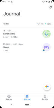 google fit denik spanek