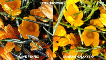 Fototest Huawei P30 Pro vs Samsung Galaxy S10 Plus květiny detail