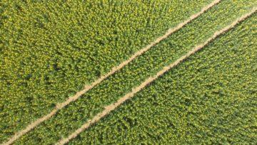 Hubsan Zino fotografie z dronu cesta