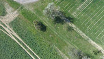 Hubsan Zino fotografie z dronu jaro stromy