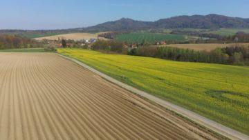 Hubsan Zino fotografie z dronu krajina s řepkou