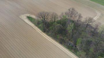 Hubsan Zino fotografie z dronu stromy na jaře