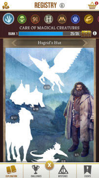 Registry Wizards Unite Hagrid