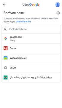 správa hesel google chrome