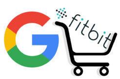 google fitbit koupe