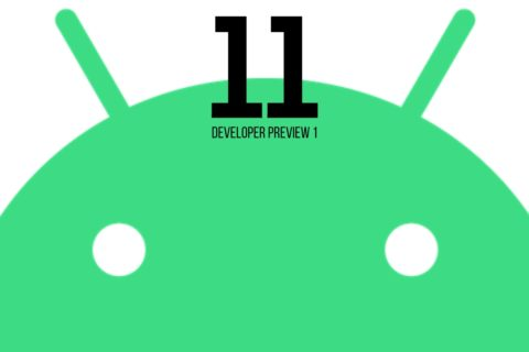 Developer Preview 1 Android 11