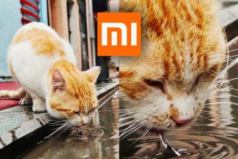 jak dobře fotí Xiaomi Mi 10