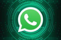 WhatsApp chyba vyhledávání Google