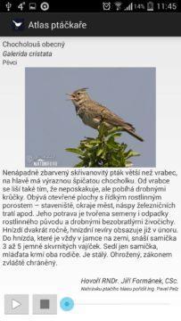 Atlas Ptáčkaře Free - pro ornitology