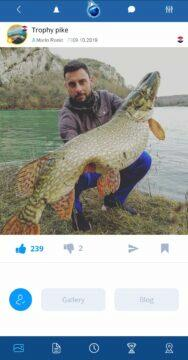 plná verze aplikace Fishsurfing uživatelé Marin