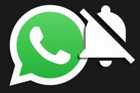 whatsapp-trvale-vypnuti-notifikaci