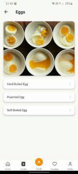 Anova Precision vejce