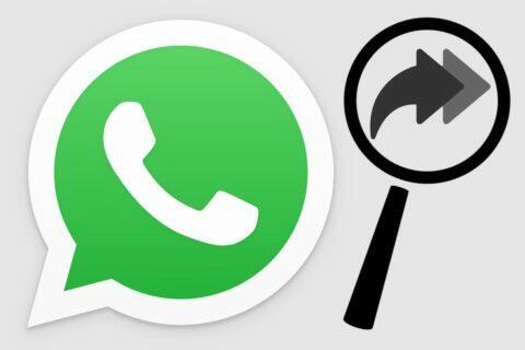 WhatsApp Prohledávání webu