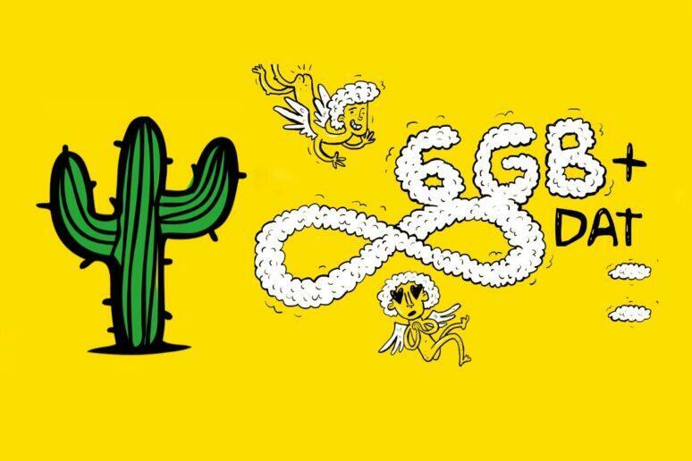 kaktus Vánoce datový balíček