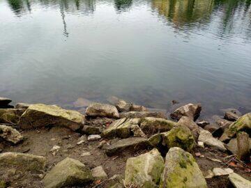 Realme 7i foto řeka