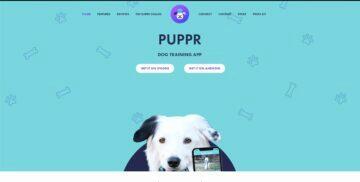 google inspirativní weby aplikace 2020 Puppr.app
