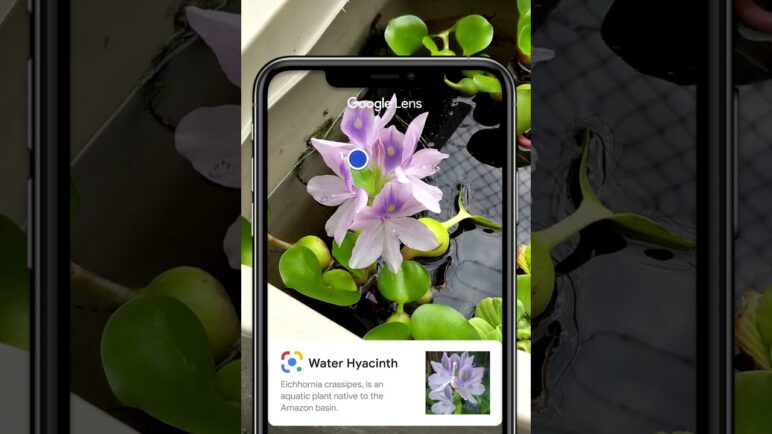 Save Time with Google Lens