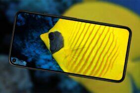jak fotí Pixel 5 pod vodou