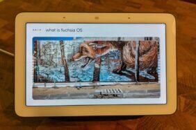 Fuchsia OS Nest Hub Google
