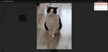 Uložení fotek z Gmailu Fotky Google synchronizace dokončena