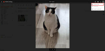 Uložení fotek z Gmailu Fotky Google synchronizace druhá možnost